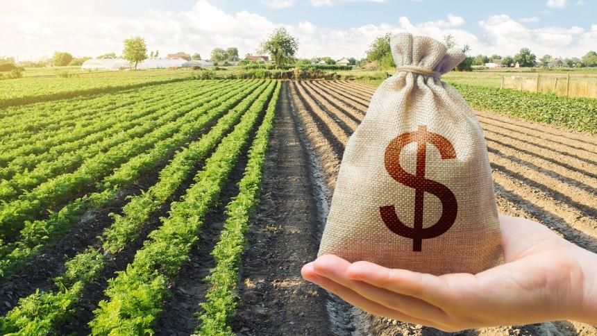 Agricultura brasileira será foco global de financiamentos verdes