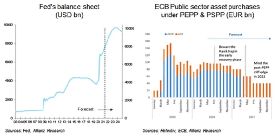 Figura 4- Cenário Fed e BCE