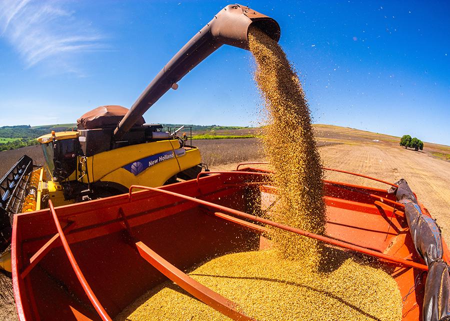 Agricultura: produção de grãos no Brasil crescerá 27% nos próximos dez anos, chegando a 333 milhões de toneladas