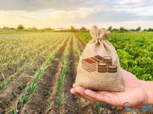 Com R$ 27 bilhões, crédito rural atinge recorde no primeiro mês da safra 2021/2022
