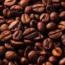 Exportação brasileira de café recua 12,8%, para 2,8 mi de sacas, em julho de 2021