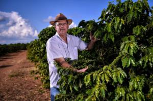 Café Produtor mineiro supera prejuízos com geadas e ganha concurso