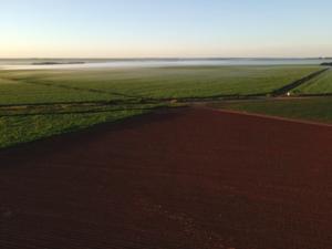 Realizada maior venda de fazenda da história, por R$ 589 milhões